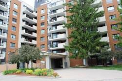 Country Hills Plaza Kitchener